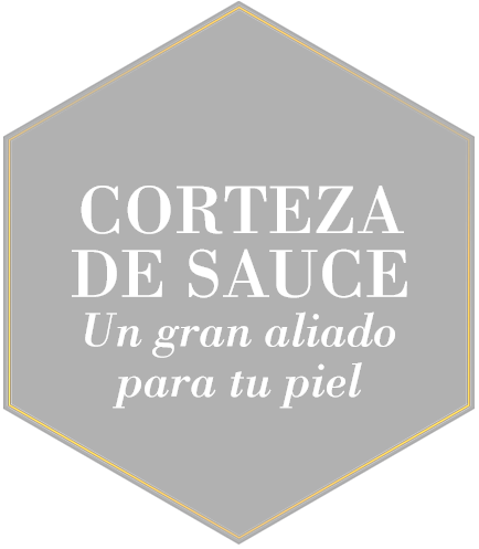 CORTEZA_DE_SAUCE