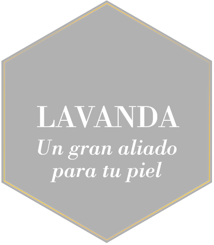 LAVANDA